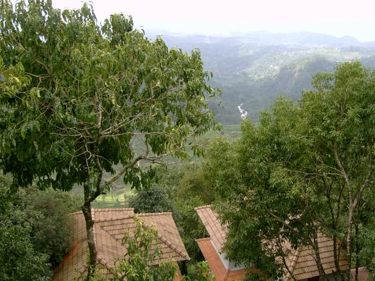 BlackBerry Hills
