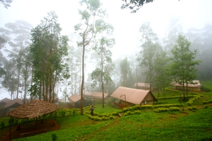 Nature Zone Resort, Munnar