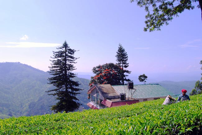 02 Nights Munnar 01 Night Alleppey House Boat Rs.6000/-