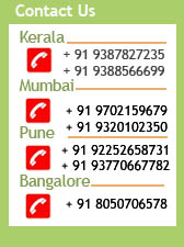 contact-kerala-tours