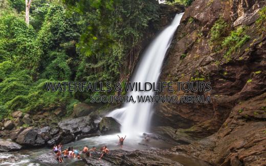 Soojipara waterfalls wayanad 1 copy