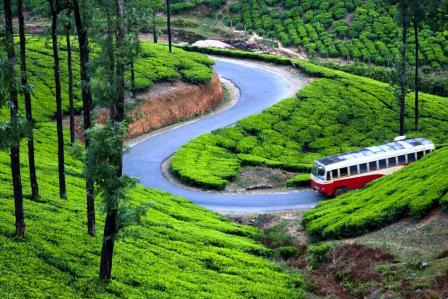 Vagamon Group Tour 01Night Rs 900/- Per Person Incl Stay Dinner,Breakfast